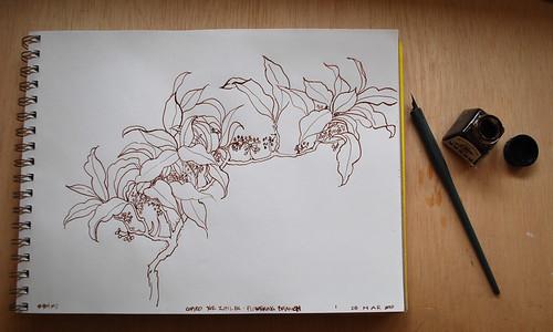 20100328 ink dwg 3