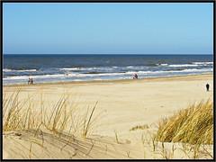 Thinking of Holland: Bergen aan Zee beach (2) (H. Bos) Tags: beach nature dutch strand landscape coast dunes natuur bergen duinen hollands landschap egmond kust bergenaanzee egmondaanzee denkendaanholland egmondbeach thinkingofholland