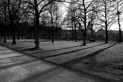 Hofgarten (montnoirat) Tags: leica blackandwhite film monochrome 35mm ed austria blackwhite sterreich interestingness nikon delta super xp2 f 400 m8 plus sw hp5 p 100 pan kodachrome mm d200 monochrom nikkor agfa 35 schwarzweiss weiss ilford fp4 m6 apx schwarz vr afs x1 leicacamera dx georg m9 m7 x2 f3556g i 18105mm schwarzenberger leicam9 pureblackandwhite georgschwarzenberger leicakamera  leicam9monochrom leicam9monochrome