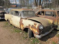 Opel Olympia Rekord 1955 (luft-kraftwerk) Tags: cars graveyard vw volkswagen switzerland rusty forgotten bern junkyard casse tempo tatra matador autofriedhof beutler grbetal kaufdorf messerli