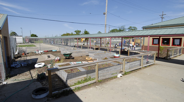 Garden of Eatin' Project - Lower 9th Ward - New Orleans