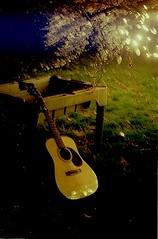 Guitar under a tree (Erica-tasmic) Tags: tree film night table lights iso200 kodak guitar kodakgold gold200