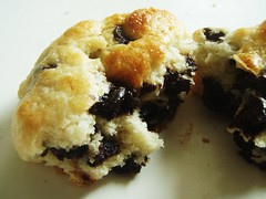 65 - english cream chocolate chip scones