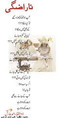 006-narazghi (Zulfiqar ahmed Aarish) Tags: pakistan love cards poetry romance poet kashmir seri kotli urdu pyar ishq shairi muhabbat aarish urdupoetry janoon poetrycards zulfiqarahmedaarish muhabbatnehainhaijanootumsay urdupages kashmiripoets urducards lovecardsurduadab