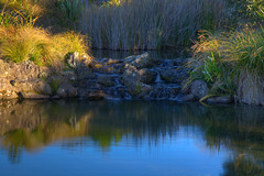 Small Waterfall in Auckland Botanical Gardens (russellstreet) Tags: newzealand reflection water waterfall auckland hdr highdynamicrange nzl aucklandregion aucklandbotanicalgardens manakaucity