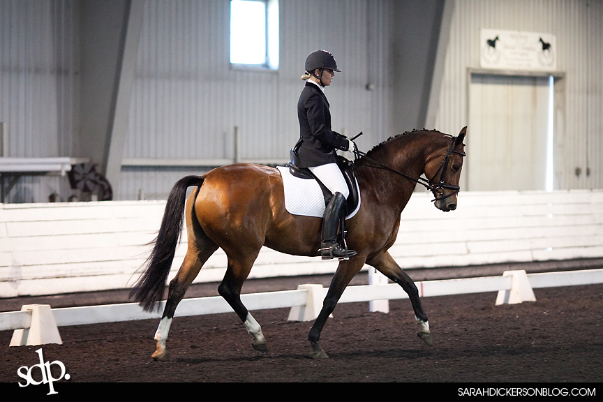 William Woods Dressage Show Photography