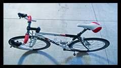 Cinelli Xperience (Travis!1) Tags: team bikes aaa centaur campagnolo fizik antares c50 cinelli neuvation xperience