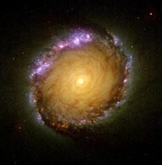 Anillo nuclear de NGC1512.