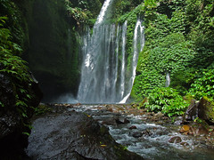 Waterfalls (daniel-s) Tags: bali rainforest wasserfall waterfalls lombok regenwald eliteimages