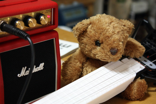 a bear and his guitar