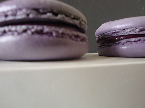 Blueberry Macarons by Tim Kinnaird