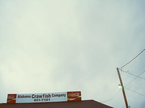 Alabama Crawfish Co.