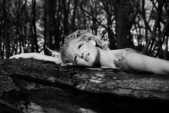 (Emily Grace.) Tags: woodland magic fairy mystical