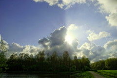Hiding (Hindrik S) Tags: blue trees sky sun tree loft clouds bomen trace wolken bluesky boom beam lucht cpf sunbeam baum wolk zonnestraal cloudhunter straal cloudhunting striel beammen sonyphotographing