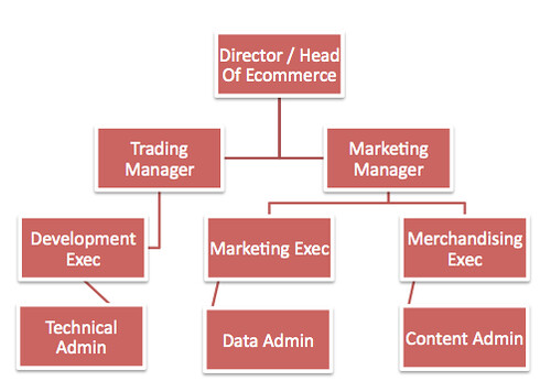Ecommerce team organogram