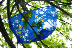 Europe (Niccol Caranti) Tags: blue light sun tree verde green yellow backlight lago europa europe european symbol blu flag politics union eu giallo sole festa albero luce trentino controluce ue politica europea bandiera simbolo unione pergine valsugana caldonazzo europeday dsc6027 nikond40x festadelleuropa sanbaradio sancristoforoallago localitsancristoforo giornoeuropeo leuropasiimpigliatasuunalbero
