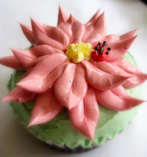 Red Flower Cupcake