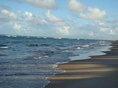 O encontro do mar com o Brasil (Centim) Tags: cidade gua brasil mar areia natureza paisagem paisagens estado cidades alagoas planeta