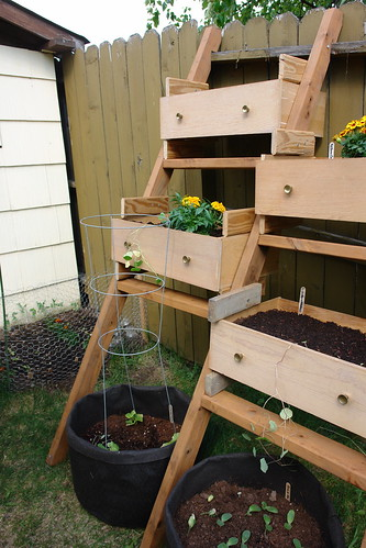 4656323899 d81f508227 5 Storage Tips For Your Garden That Will Leave It Looking Great