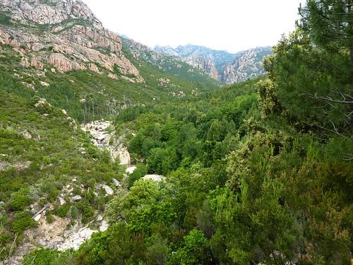 """Montée sur la """"piste"""" : Figa Bona (Mela IGN) et canyon de Carciara au fond"""
