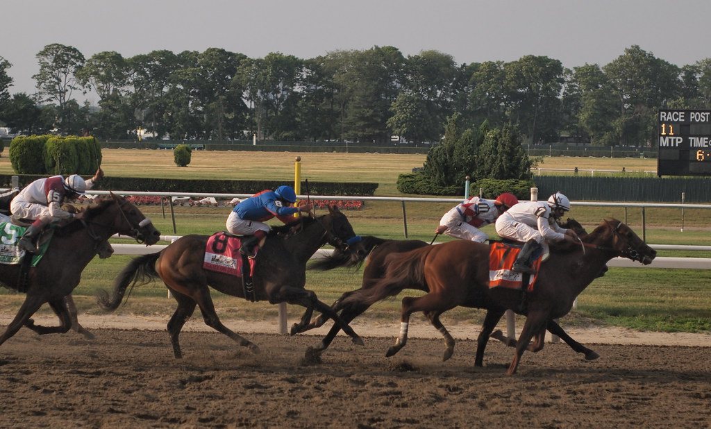 stretch of belmont stakes
