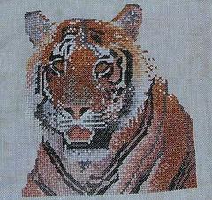 W.i.p. Tiger - 06/06/10