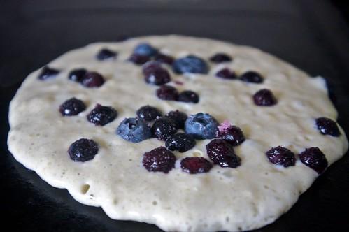 blueberry dabbling