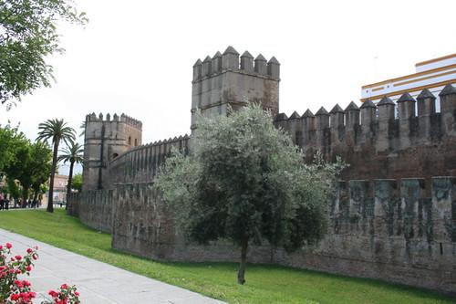 Dianas- Spain 2010 219