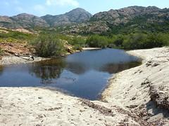 Ruisseau de Cala di Vana : Sualelli