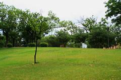 002623 - Madrid (M.Peinado) Tags: madrid parque espaa planta canon spain rbol 2010 hierba comunidaddemadrid ccby canoneos1000d 12062010 juniode2010 parqueelparaiso