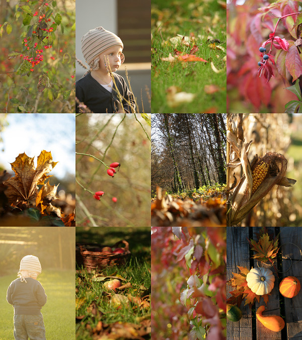 Októberi színkavalkád