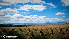 Nubes (J E R R Y) Tags: de jeep jerry pico puebla lightroom orizaba gmlo1274