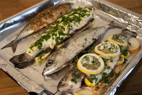 Fish, Prepped for Baking