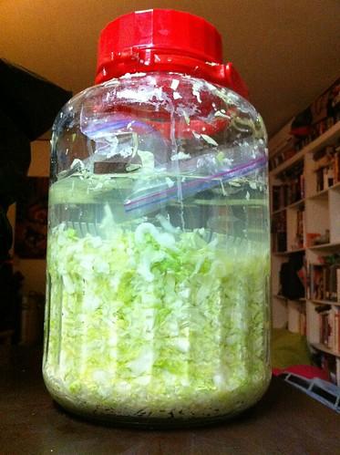 Sauerkraut, First Step