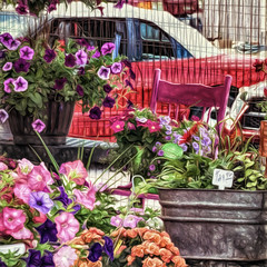 Shopping at the greenhouse (David DeCamp) Tags: flowers plant store market selling nature retail pot summer color urban street freshness greenhouse