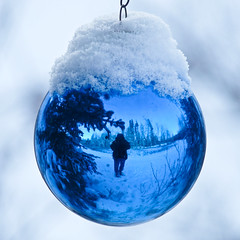 Christmas in the park (annkelliott) Tags: park christmas blue winter snow canada reflection calgary me nature digital square outdoors lumix colorful pretty seasons image bokeh decoration explore photograph alberta pointandshoot bauble squarecrop interestingness2 fishcreekpark colorimage feelsgood southernalberta treeornament allrightsreserved beautifulexpression annkelliott votiersflats bestofwinter fz28 panasonicdmcfz28 anneelliott2009 p1310823fz28 explore2009december13