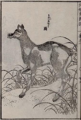 Mamiya Rinzo - Kita Ezo zusetsu vol. 1 (1855)