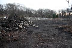 new dirt 4