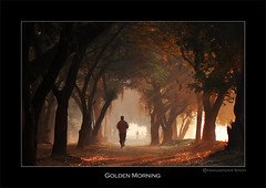 A Golden Morning ! (Harvarinder Singh) Tags: morning trees art nature de photography golden bravo image walk lars explore valley van brava jog singh ludhiana goor liesure bej topseven harvarinder