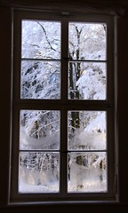 (Linda6769 (hiking)) Tags: winter mountain snow tree window museum germany town thringen hoarfrost thuringia inside ilmenau huntinglodge kickelhahn jagdhaus jagdhausgabelbach