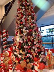 Um feliz Natal a todos!