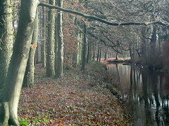 PC250147 (Gruble) Tags: ommen 3000z