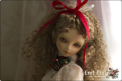 MERRY XMAS (★STAR★) Tags: sd bjd superdollfie volks kun