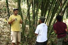 IMG_2296 (UPC (Urban Poor Consortium)) Tags: bali indonesia construction community bamboo workshop bambu upc builder klungkung sidemen tukang iseh