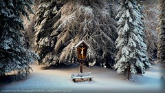 Jesus Christus (zneppi, the photo freak) Tags: trees winter snow landscape countryside woods christ jesus kreuz christus snowscape winterscape marterl herrgott artdigital commitmenttoexcellence worldlandscapes flickrhearts flickraward christusfigur flickrestrellas daarklands goldenplanet sailsevenseas trolledproud fabulousplanet platinumplanet flickraward5 mygearandme mygearandmepremium mygearandmebronze mygearandmesilver mygearandmegold art2010 eliteplanet thelargestgroupintheworld buildyourrainbow mygearandmeplatinum mygearandmediamond excellentqualityaward aboveandbeyondlevel4 aboveandbeyondlevel1 aboveandbeyondlevel2 aboveandbeyondlevel3