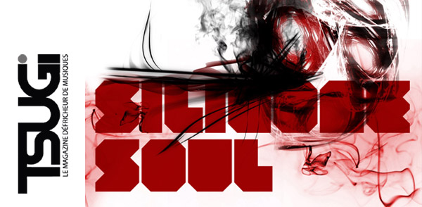 Tsugi Podcast 117 : Silicone Soul (Image hosted at FlickR)