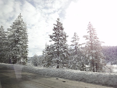 Driving to Tahoe (Andy Reitz) Tags: california skiing tahoe boreal