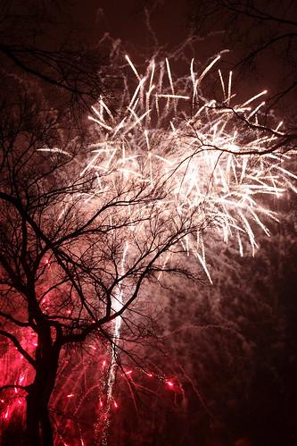 Ano Novo - Central Park