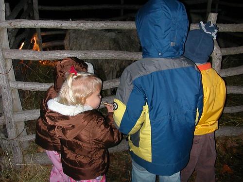 Dec 13 2009 The kids