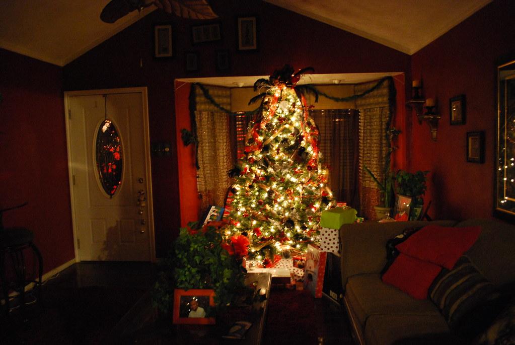 Texas Christmas 09 075